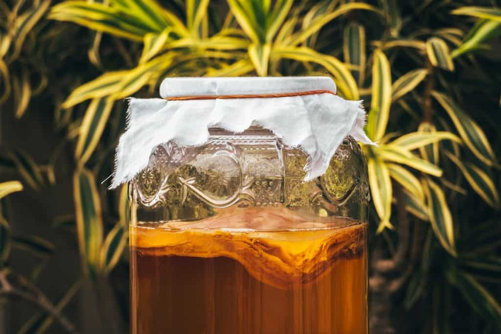 What is Kombucha, and is it beneficial for health
